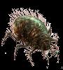 https://thief.worldofplayers.de/images/content/enemy3_rustmite